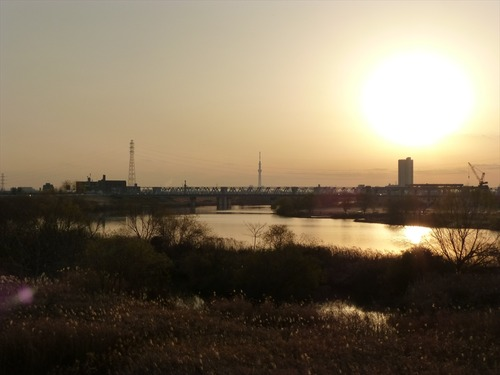 NO43 松戸野田関宿自転車道線