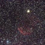 IC443 くらげ星雲