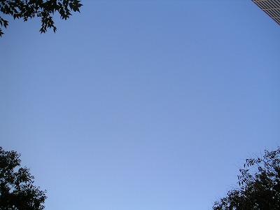 ■空を見る日