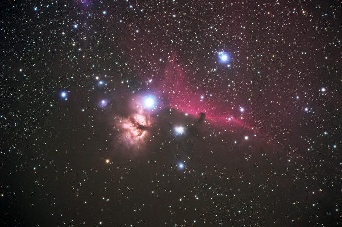 燃える木&馬頭星雲