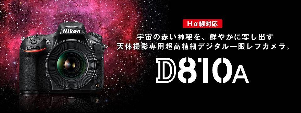 d810a